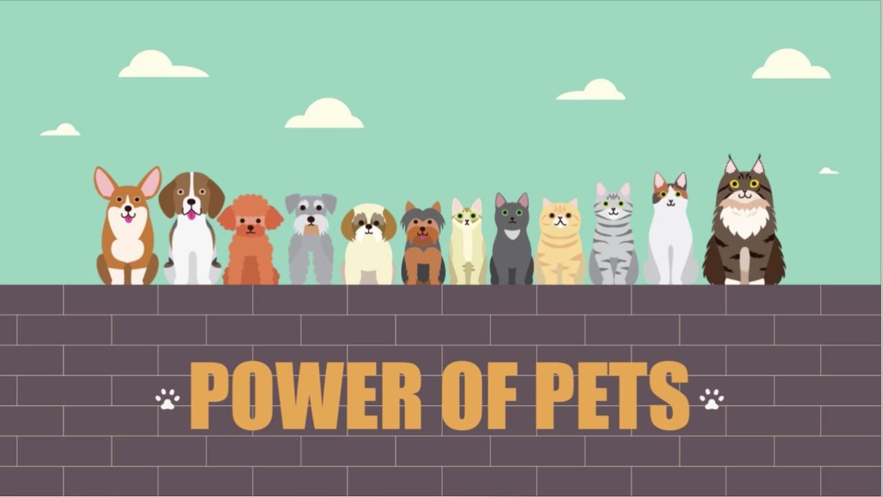 One Cool Thing (Power Of Pets)